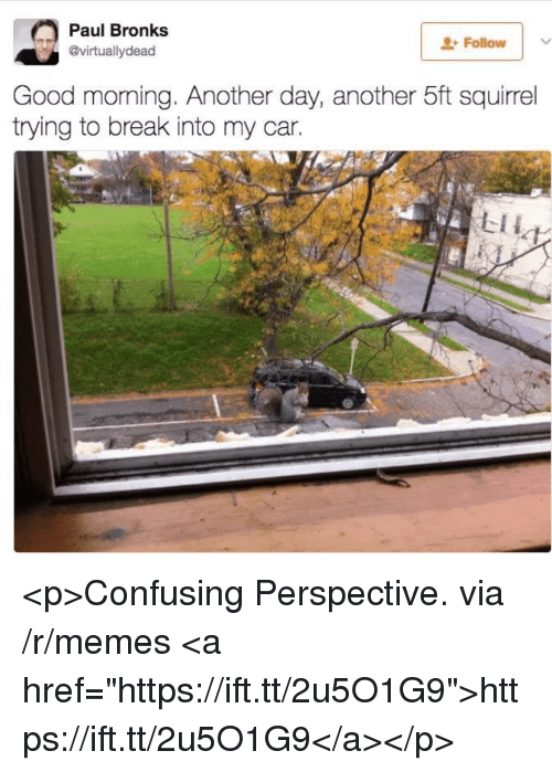 "Memes, Good Morning, and Break: Paul Bronks  @virtuallydead  Followv  Good morning. Another day, another 5ft squirrel  trying to break into my car. <p>Confusing Perspective. via /r/memes <a href=""https://ift.tt/2u5O1G9"">https://ift.tt/2u5O1G9</a></p>"