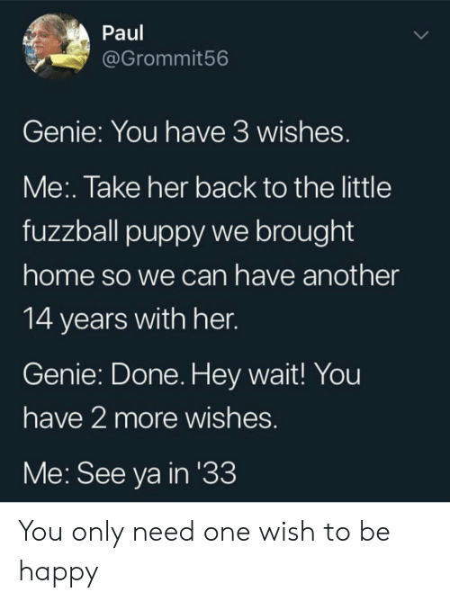genie: Paul  @Grommit56  Genie: You have 3 wishes.  Me:. Take her back to the little  fuzzball puppy we brought  home so we can have another  14 years with her.  Genie: Done. Hey wait! You  have 2 more wishes.  Me: See ya in '33 You only need one wish to be happy