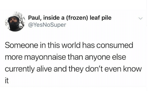 pile: Paul, inside a (frozen) leaf pile  @YesNoSuper  Someone in this world has consumed  more mayonnaise than anyone else  currently alive and they don't even know  it