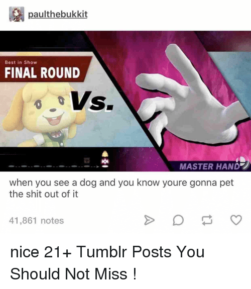 Shit, Tumblr, and Best: paulthebukkit  Best in Show  FINAL ROUND  MASTER HAND  when you see a dog and you know youre gonna pet  the shit out of it  41,861 notes nice 21+ Tumblr Posts You Should Not Miss !