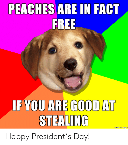 stealing: PEACHES ARE IN FACT  FREE  IF YOU ARE GOOD AT  STEALING  hade an mgur Happy President's Day!