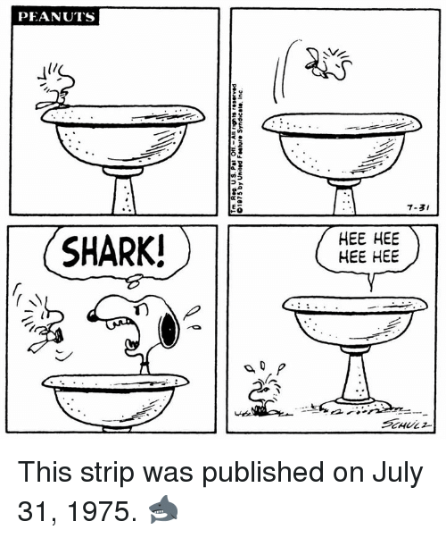 Memes, Shark, and July 31: PEANUTS  7-3I  SHARK!  HEE HEE  HEE HEE This strip was published on July 31, 1975. 🦈