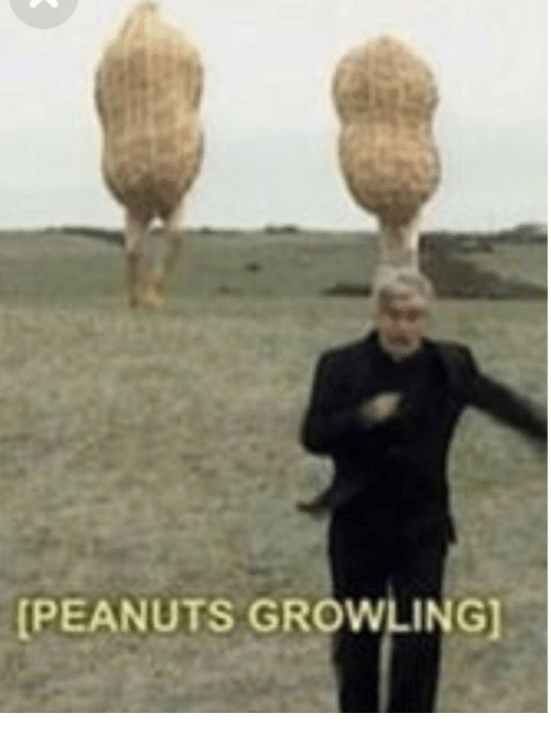 Peanuts and Growling: PEANUTS GROWLING