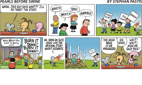 We Now: PEARLS BEFORE SWINE  BY STEPHAN PASTIS  WHOA...THIS GUY SAID WHAT  I  WHAT2  EVIL  RE-TWEET THE STORY  HIM  FoR  Hey What the  THE GOODOH. WAIT!  BURNIT UH. HANG ON GUY  00KS LIKE THE  WORIGINAL STORY  BURN ITWASNT ACCURATE  heck is going  on  NEWS GOODWAIT  IS WE  NOW HE  SAID THIS  APOLOGIZED  DOWN!  AD