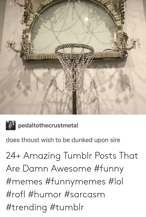 Funny, Lol, and Memes: pedaltothecrustmetal  does thoust wish to be dunked upon sire 24+ Amazing Tumblr Posts That Are Damn Awesome #funny #memes #funnymemes #lol #rofl #humor #sarcasm #trending #tumblr