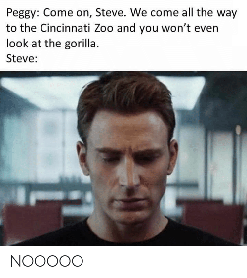 Dank Memes, All The, and Zoo: Peggy: Come on, Steve. We come all the way  to the Cincinnati Zoo and you won't even  look at the gorilla.  Steve: NOOOOO