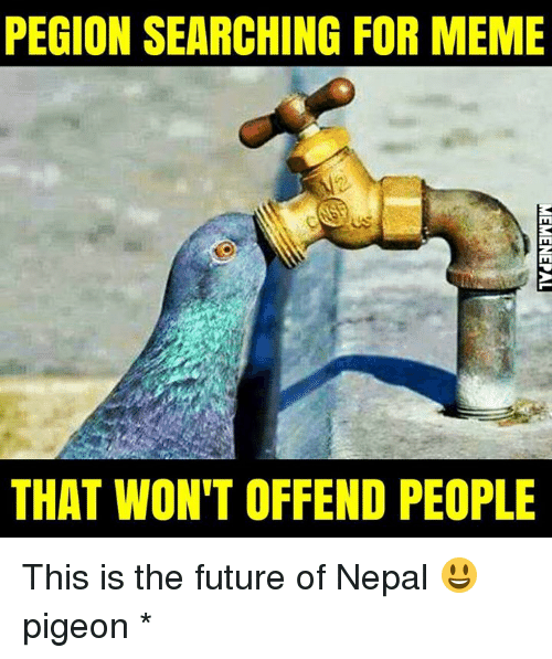 nepali: PEGION SEARCHING FOR MEME  ct us  THAT WON'T OFFEND PEOPLE This is the future of Nepal 😃 pigeon *
