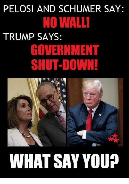 pelosi: PELOSI AND SCHUMER SAY:  NO WALL!  TRUMP SAYS:  GOVERNMENT  SHUT-DOWN!  ra  WHAT SAY YOU?