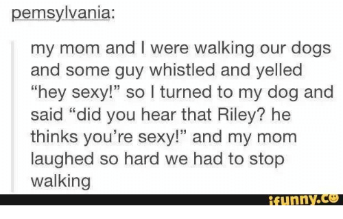 """Youre Sexy: pemsylvania:  my mom and I were walking our dogs  and some guy whistled and yelled  """"hey sexy!"""" so I turned to my dog and  said """"did you hear that Riley? he  thinks you're sexy!"""" and my mom  laughed so hard we had to stop  walking  ifunny.co"""