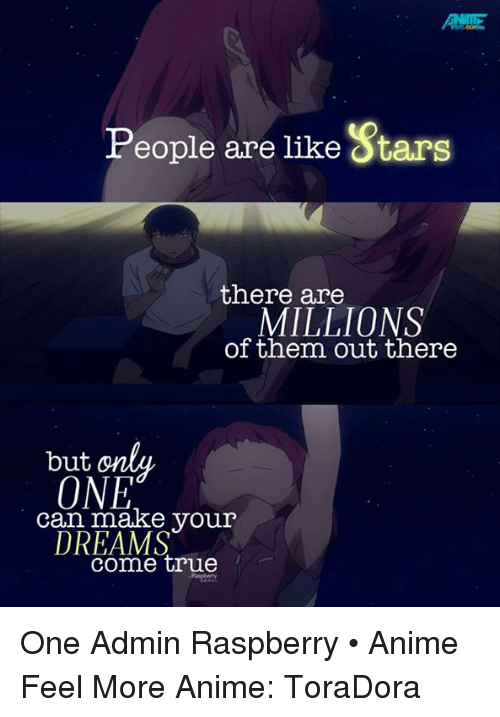 animal feelings: People are like 8tars  there are  MILLIONS  of them out there  but  ONE  can make your  DREAMS  come true One  Admin Raspberry • Anime Feel More Anime: ToraDora
