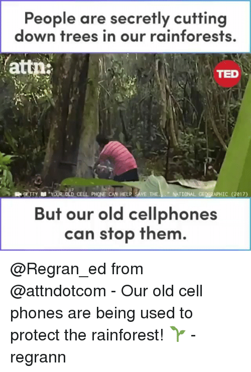 """attn: People are secretly cutting  down trees in our rainforests,  attn  TED  YOUR OLD CELL PHONE CAN HELP SAVE THE""""NATIONAL GEOGRAPHIC (2017)  But our old cellphones  can stop them @Regran_ed from @attndotcom - Our old cell phones are being used to protect the rainforest! 🌱 - regrann"""