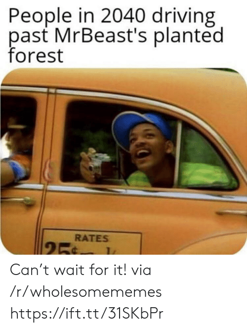 Driving, Forest, and Can: People in 2040 driving  past MrBeast's planted  forest  RATES  25¢ Can't wait for it! via /r/wholesomememes https://ift.tt/31SKbPr