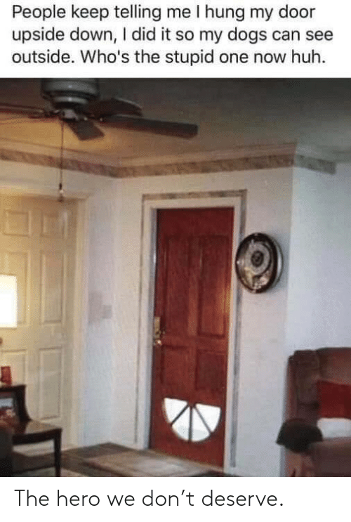The Stupid: People keep telling me I hung my door  upside down, I did it so my dogs can see  outside. Who's the stupid one now huh The hero we don't deserve.