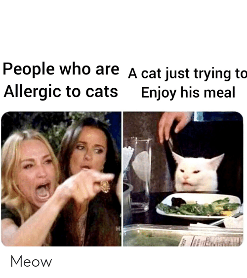 Allergic: People who are A cat just trying to  Allergic to cats  Enjoy his meal Meow