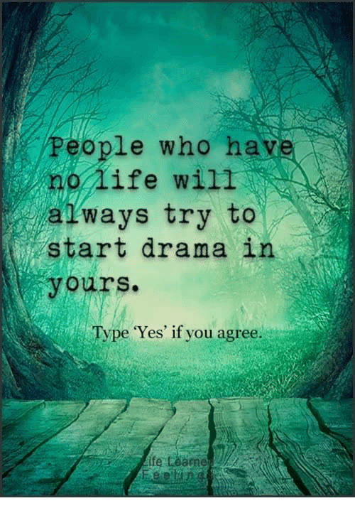 have-no-life: People who have  no life will  atways try to  start drama in  yours.  Type Yes' if you agree.