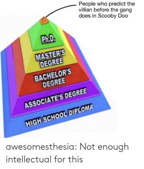 degree: People who predict the  villian before the gang  does in Scooby Doo  Ph.D.  MASTER'S  DEGREE  BACHELOR'S  DEGREE  ASSOCIATE'S DEGREE  HIGH SCHOOL DIPLOMA awesomesthesia:  Not enough intellectual for this