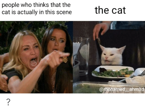 Cat, Who, and Mohamed: people who thinks that the  cat is actually in this scene  the cat  @mohamed ahm3d ?