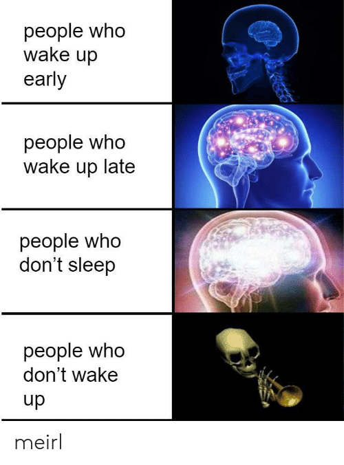 Up Late: people who  wake up  early  people who  wake up late  people who  don't sleep  people who  don't wake  dn meirl