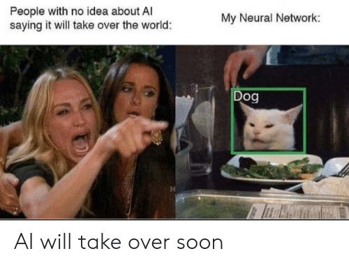 Take Over: People with no idea about A  saying it will take over the world:  My Neural Network:  Dog AI will take over soon