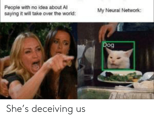 World, Idea, and Dog: People with no idea about Al  saying it will take over the world:  My Neural Network:  Dog She's deceiving us