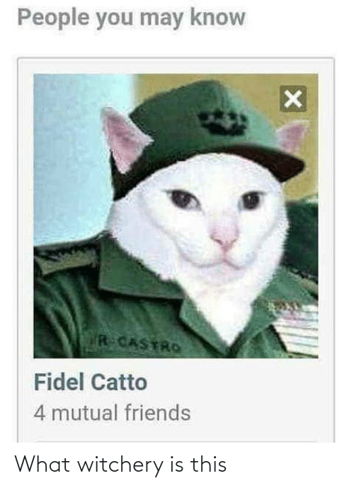 mutual: People you may know  R CASTRO  Fidel Catto  4 mutual friends What witchery is this