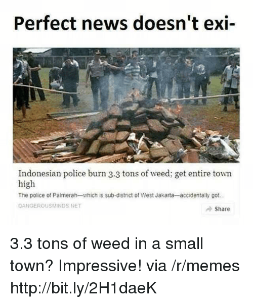 Memes, News, and Police: Perfect news doesn't exi-  Indonesian police burn 3.3 tons of weed; get entire town  high  The police of Palmerah-which is sub-district of West Jakarta-accidentally got  DANGEROUSMINDS NET  Share 3.3 tons of weed in a small town? Impressive! via /r/memes http://bit.ly/2H1daeK