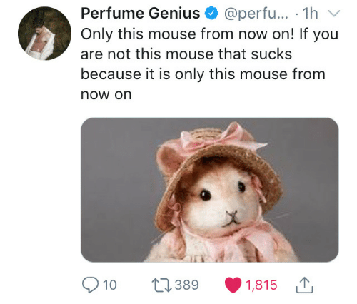 perfume: Perfume Genius @perfu... 1hv  Only this mouse from now on! If you  are not this mouse that sucks  because it is only this mouse from  now on  a)  10 389 1,815