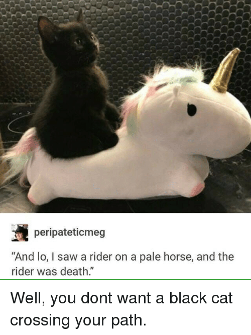"""Saw, Black, and Death: peripateticmeg  """"And lo, I saw a rider on a pale horse, and the  rider was death."""" Well, you dont want a black cat crossing your path."""