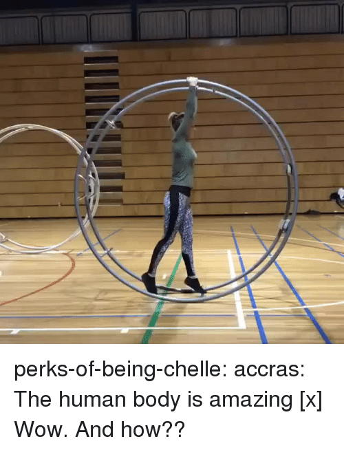 Instagram, Target, and Tumblr: perks-of-being-chelle: accras:  The human body is amazing  [x]  Wow. And how??