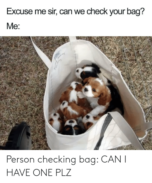 Can I Have: Person checking bag: CAN I HAVE ONE PLZ