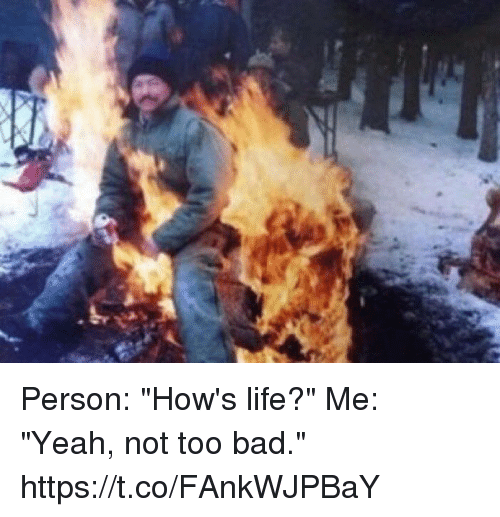 """Bad, Life, and Yeah: Person: """"How's life?""""   Me: """"Yeah, not too bad."""" https://t.co/FAnkWJPBaY"""
