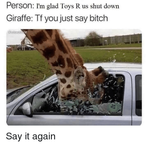 Bitch, Funny, and Toys R Us: Person: I'm glad Toys R us shut down  Giraffe: Tf you just say bitch Say it again