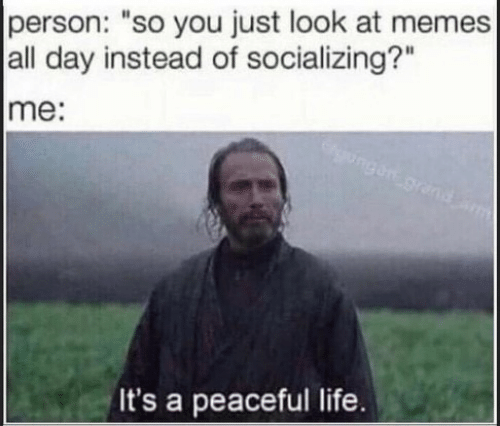 """Life, Memes, and Day: person: """"so you just look at memes  all day instead of socializing?""""  me:  gensgrand  It's a peaceful life."""