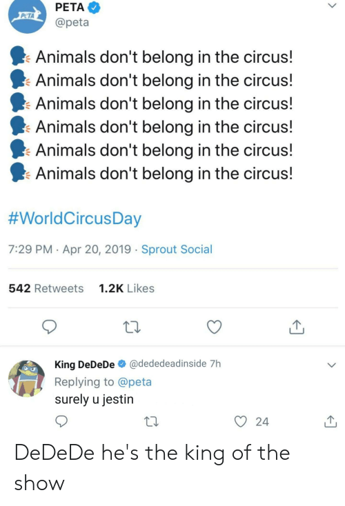 Animals, Peta, and Dank Memes: PETA  PCTA  @peta  Animals don't belong in the circus!  Animals don't belong in the circus!  Animals don't belong in the circus  Animals don't belong in the circus!  Animals don't belong in the circus!  Animals don't belong in the circus!  #WorldCircusDay  7:29 PM Apr 20, 2019 Sprout Social  542 Retweets  1.2K Likes  King DeDeDe @dededeadinside 7h  Replying to @peta  surely u jestin  y 24  10 DeDeDe he's the king of the show