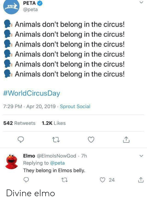 Elmo: PETA  @peta  Animals don't belong in the circus!  Animals don't belong in the circus!  Animals don't belong in the circus!  Animals don't belong in the circus!  Animals don't belong in the circus!  I. Animals don't belong in the circus!  #WorldCircusDay  7:29 PM . Apr 20, 2019 Sprout Social  542 Retweets  1.2K Likes  Elmo @ElmolsNowGod 7h  Replying to @peta  They belong in Elmos belly.  O 24 Divine elmo