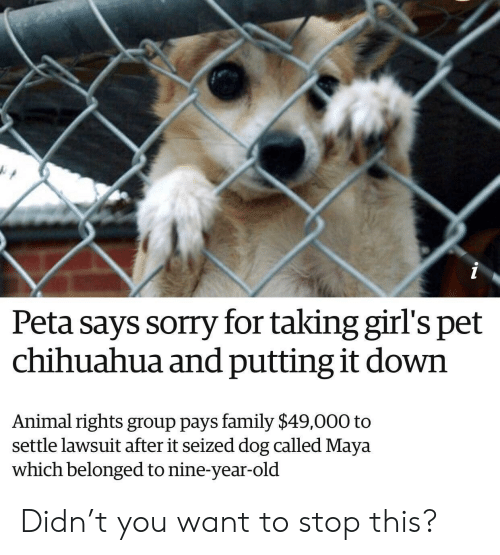 Chihuahua, Family, and Girls: Peta says sorry for taking girl's pet  chihuahua and putting it down  Animal rights group pays family $49,000 to  settle lawsuit after it seized dog called Maya  which belonged to nine-year-old Didn't you want to stop this?