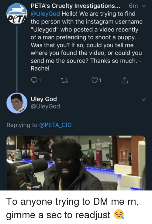 """cid: PETA's Cruelty Investigations... 6m  @UleyGod Hello! We are trying to find  ет  the person with the instagram username  """"Uleygod"""" who posted a video recently  of a man pretending to shoot a puppy.  Was that you? If so, could you tell me  where you found the video, or could you  send me the source? Thanks so much. -  Rachel  O1  Uley God  @UleyGod  Replying to @PETA CID  51 To anyone trying to DM me rn, gimme a sec to readjust 😪"""