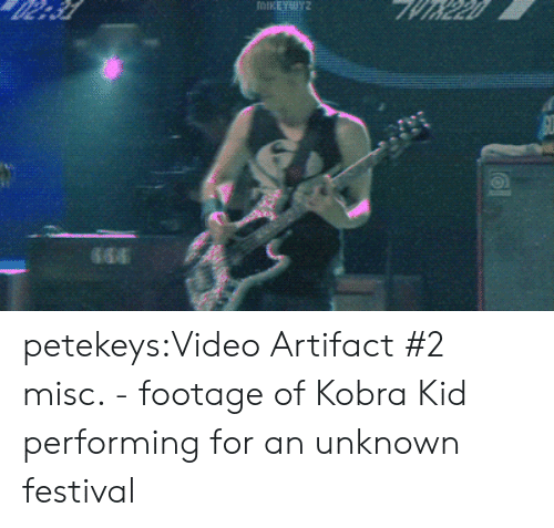 Tumblr, Blog, and Http: petekeys:Video Artifact #2 misc. - footage of Kobra Kid performing for an unknown festival