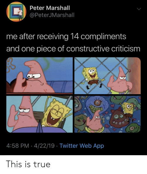 True, Twitter, and One Piece: Peter Marshall  /@PeterJMarshall  me after receiving 14 compliments  and one piece of constructive criticism  O2  4:58 PM-4/22/19 Twitter Web App This is true