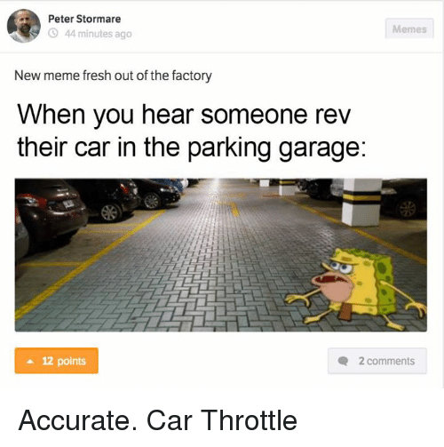 parking garage: Peter Stormare  Memes  44 minutes ago  New meme fresh out of the factory  When you hear someone rev  their car in the parking garage:  12 points  Q 2 comments Accurate.  Car Throttle