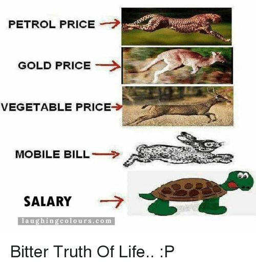 Petrol Price: PETROL PRICE  GOLD PRICE  VEGETABLE PRICE  MOBILE BILL  SALARY  l a u g hing colo urs. co m Bitter Truth Of Life.. :P