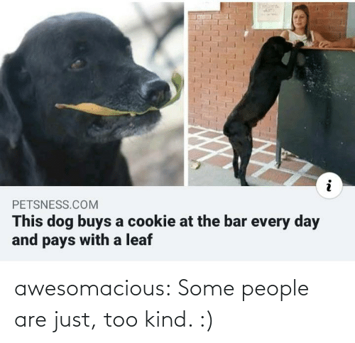 Kind: PETSNESS.COM  This dog buys a cookie at the bar every day  and pays with a leaf awesomacious:  Some people are just, too kind. :)