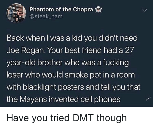 posters: Phantom of the Chopra  @steak_ham  Back when I was a kid you didn't need  Joe Rogan. Your best friend had a 27  year-old brother who was a fucking  loser who would smoke pot in a room  with blacklight posters and tell you that  the Mayans invented cell phones Have you tried DMT though