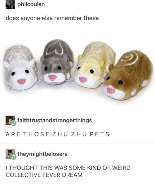 Weird, Pets, and Collective: philcoulsn  does anyone else remember these  faithtrustandstrangerthings  ARE THOSE ZHU ZHU PETS  theymightbelosers  I THOUGHT THIS WAS SOME KIND OF WEIRD  COLLECTIVE FEVER DREAM