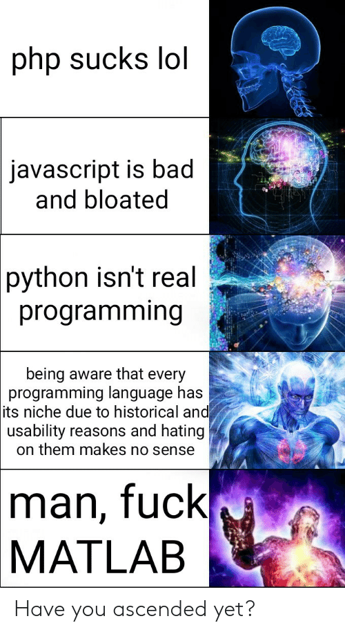 Bad, Lol, and Fuck: php sucks lol  javascript is bad  and bloated  python isn't real  programming  being aware that every  programming language has  its niche due to historical and  usability reasons and hating  on them makes no sense  man, fuck  MATLAB Have you ascended yet?