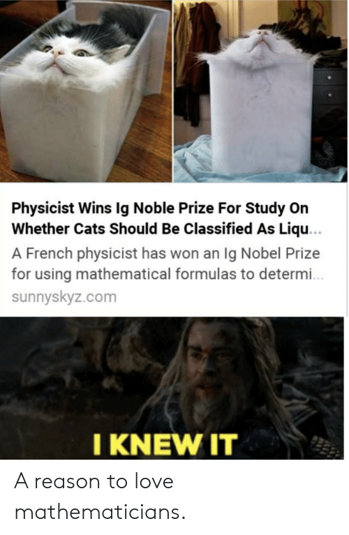 classified: Physicist Wins Ig Noble Prize For Study On  Whether Cats Should Be Classified As Liqu...  A French physicist has won an Ig Nobel Prize  for using mathematical formulas to determ..  sunnyskyz.com  I KNEW IT A reason to love mathematicians.
