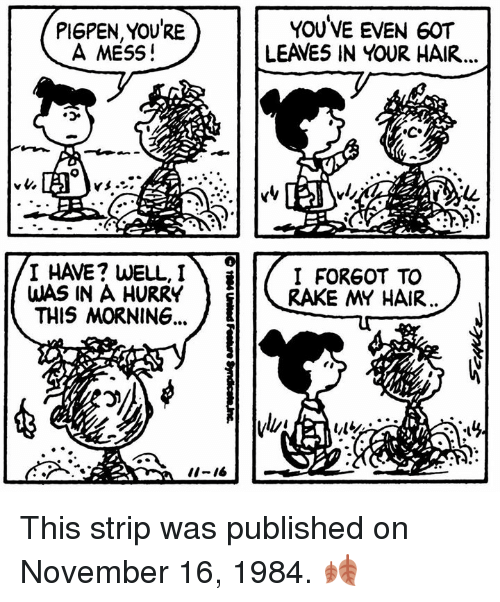 rake: PI6PEN, YOURE  A MESS!  YOUVE EVEN 60T  LEAVES IN YOUR HAIR  I HAVE? WELL,I  WAS IN A HURRY  THIS MORNING,  I FORGOT TO  RAKE MY HAIR  ii-16 This strip was published on November 16, 1984. 🍂