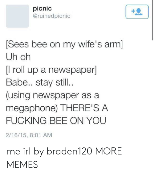 roll up: picnic  @ruinedpicnic  Sees bee on my wife's arm]  Uh oh  [l roll up a newspaper]  Babe.. stay still..  (using newspaper as a  megaphone) THERE'S A  FUCKING BEE ON YOU  2/16/15, 8:01 AM me irl by braden120 MORE MEMES