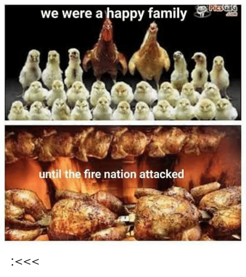 The Fire: PicsGaG  we were a happy family  until the fire nation attacked :<<<