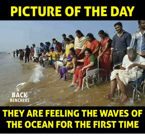 Memes, Waves, and Ocean: PICTURE OF THE DAY  BACK  BENCHERS  THEY ARE FEELING THE WAVES OF  THE OCEAN FOR THE FIRST TIME